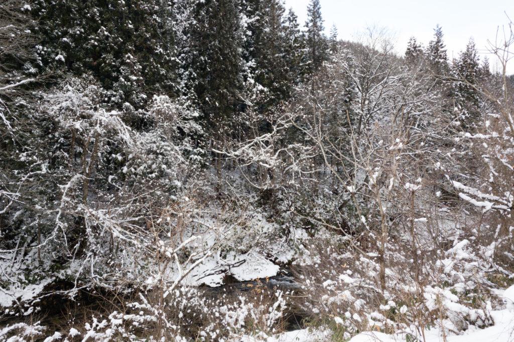 ウエストのおんな、雪が降った