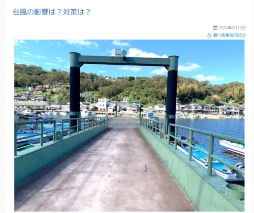 ブログの写真
